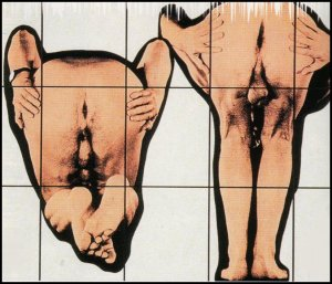 Gilbert and George - Bum holes 1994